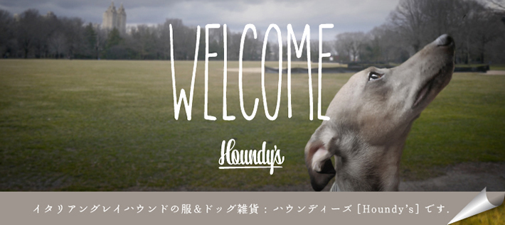 houndys サイトハウンドフェス